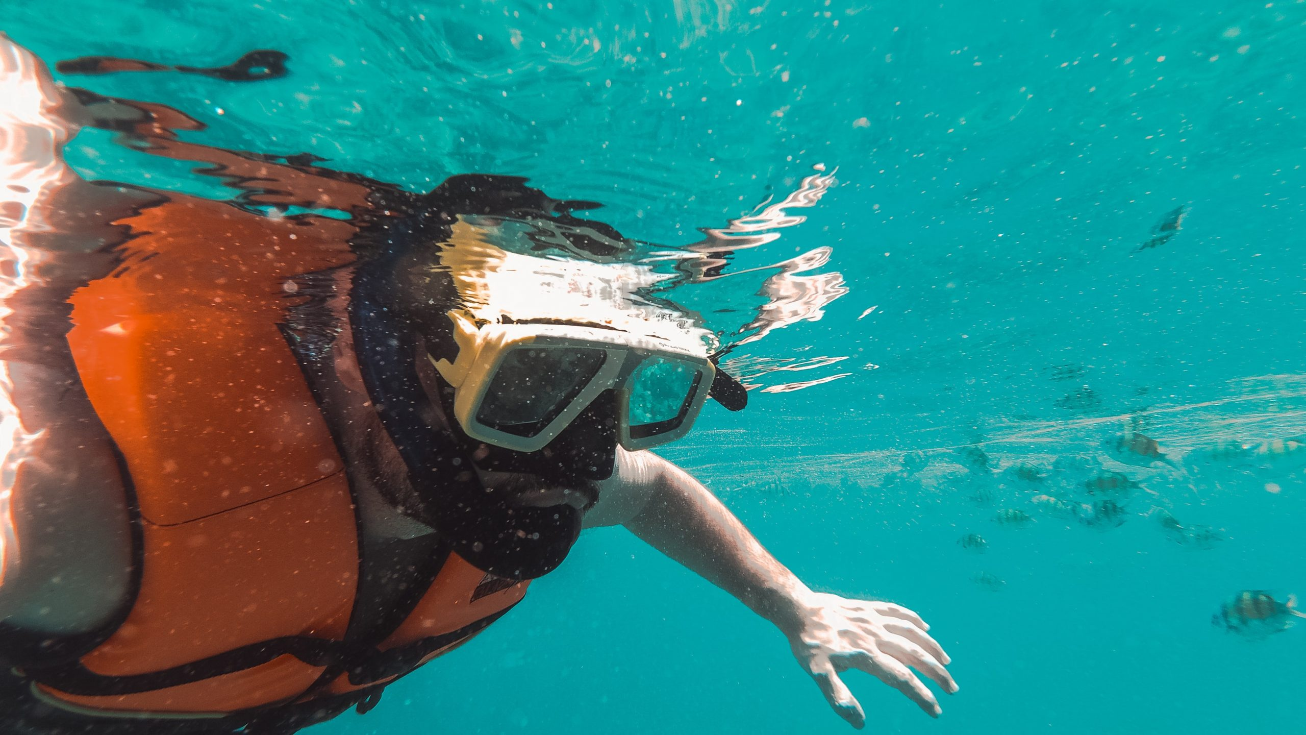 Best Snorkel Vests for Easy Snorkeling